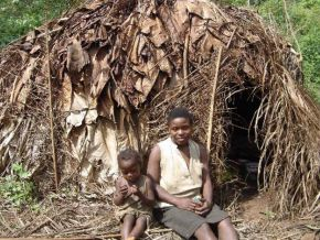 It is said that WWF is involved in spoliation of lands from Baka pygmees in Cameroon. True?