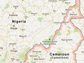 Has Cameroon really closed its borders with Nigeria?