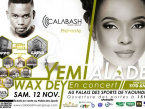 Yemi Alade paid 85 million for Cameroon concert