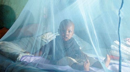 No, households are not to pay anything to get the impregnated mosquito nets the health ministry will distribute