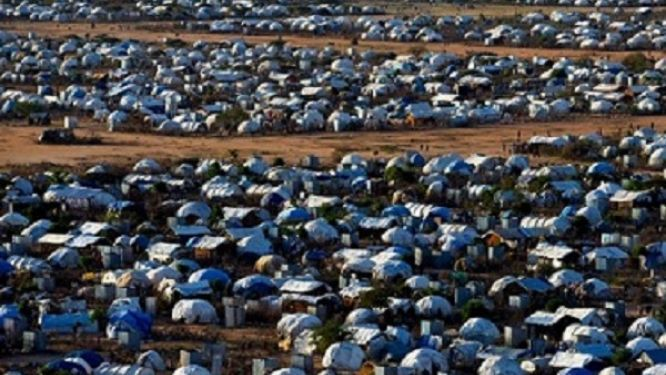 the-minawao-refugee-camp-is-overwhelmed-but-the-second-site-is-still-unprepared