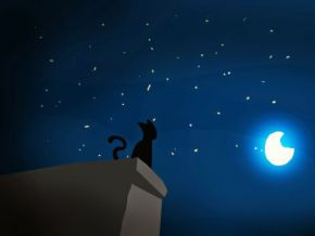 Are the nocturnal cries of a cat a bad omen?
