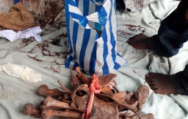 a-meiganga-des-eleves-au-coeur-d-un-trafic-d-ossements-humains
