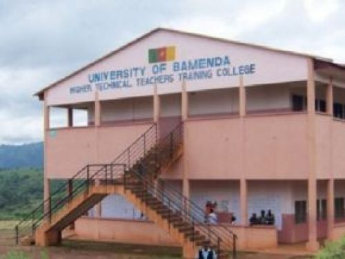 Higher education: the University of Bamenda validates its development plan