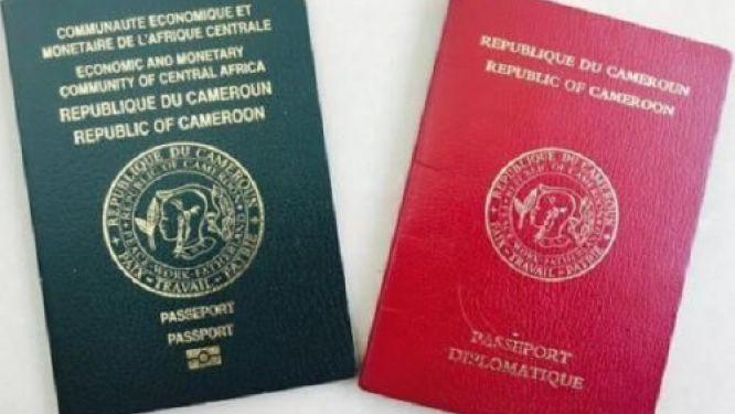 more-than-10-000-passports-issued-in-6-months-for-cameroonians-residing-in-france