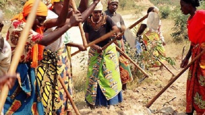 44-milliards-fcfa-de-la-banque-mondiale-pour-l-autonomisation-des-femmes-au-cameroun