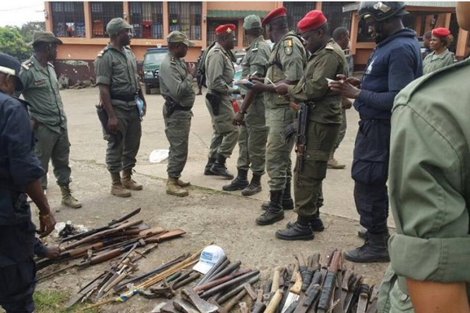 insecurity-parliament-expresses-concern-over-the-sheer-number-of-firearms-in-circulation-in-cameroon