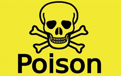 Yes, toxic farm fertilizer is being used in the production of potassium in Yagoua