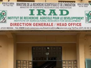 IRAD: Union reacts to the suspension of 3 staff representatives' employment contracts