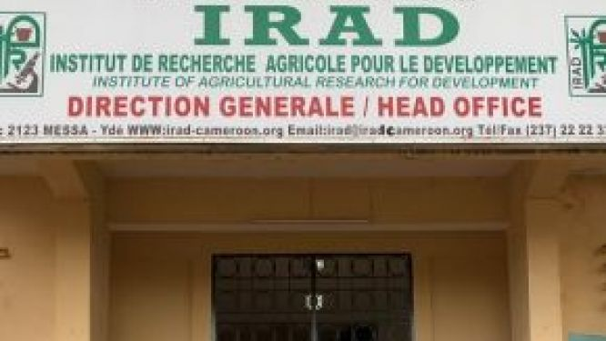 irad-union-reacts-to-the-suspension-of-3-staff-representatives-employment-contracts