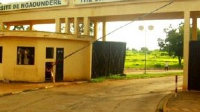 the-university-of-ngaoundere-adopts-its-strategic-plan-2021-2025