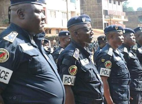 No, police officers in Cameroon do not enjoy the right to impunity