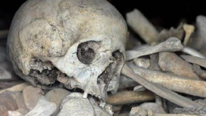 foumbot-deux-squelettes-humains-decouverts-dans-des-valises