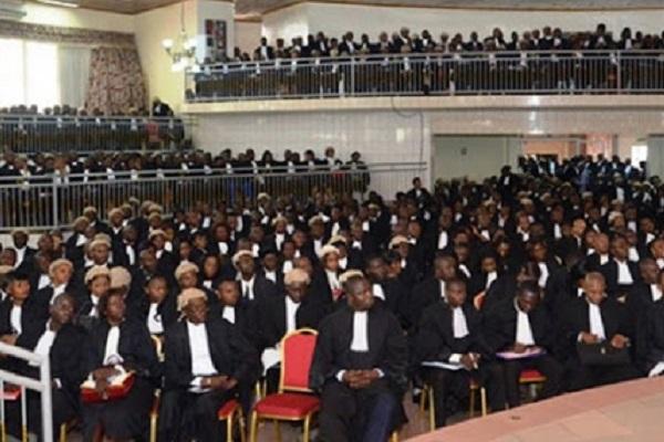 boycott-des-pretoires-le-malaise-des-avocats-du-rdpc