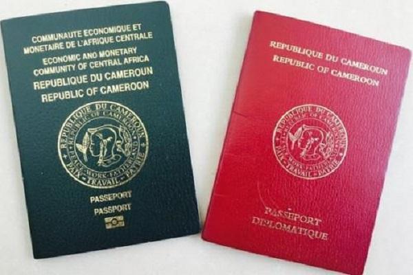 plus-de-10-000-passeports-delivres-en-6-mois-pour-les-camerounais-residant-en-france